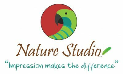 Nature Studio Logo With Tagline